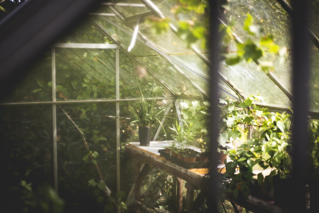 Bien choisir une serre de jardin
