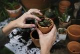 Le garden igloo pour jouir pleinement de son extérieur