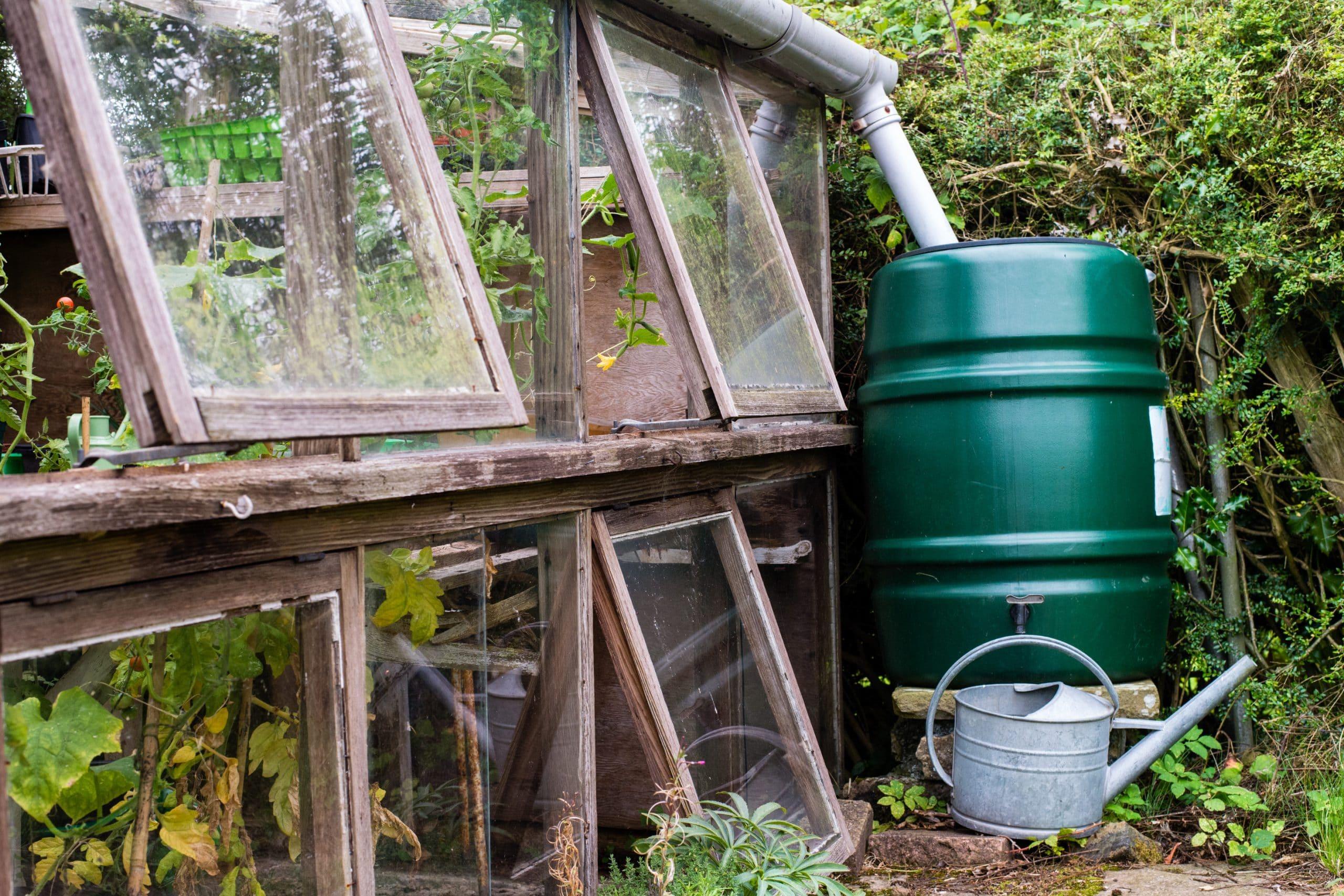 Un bac de récupération d'eau de pluie depuis une goutière