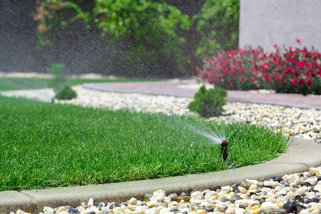 avoir pelouse verte toute l'année