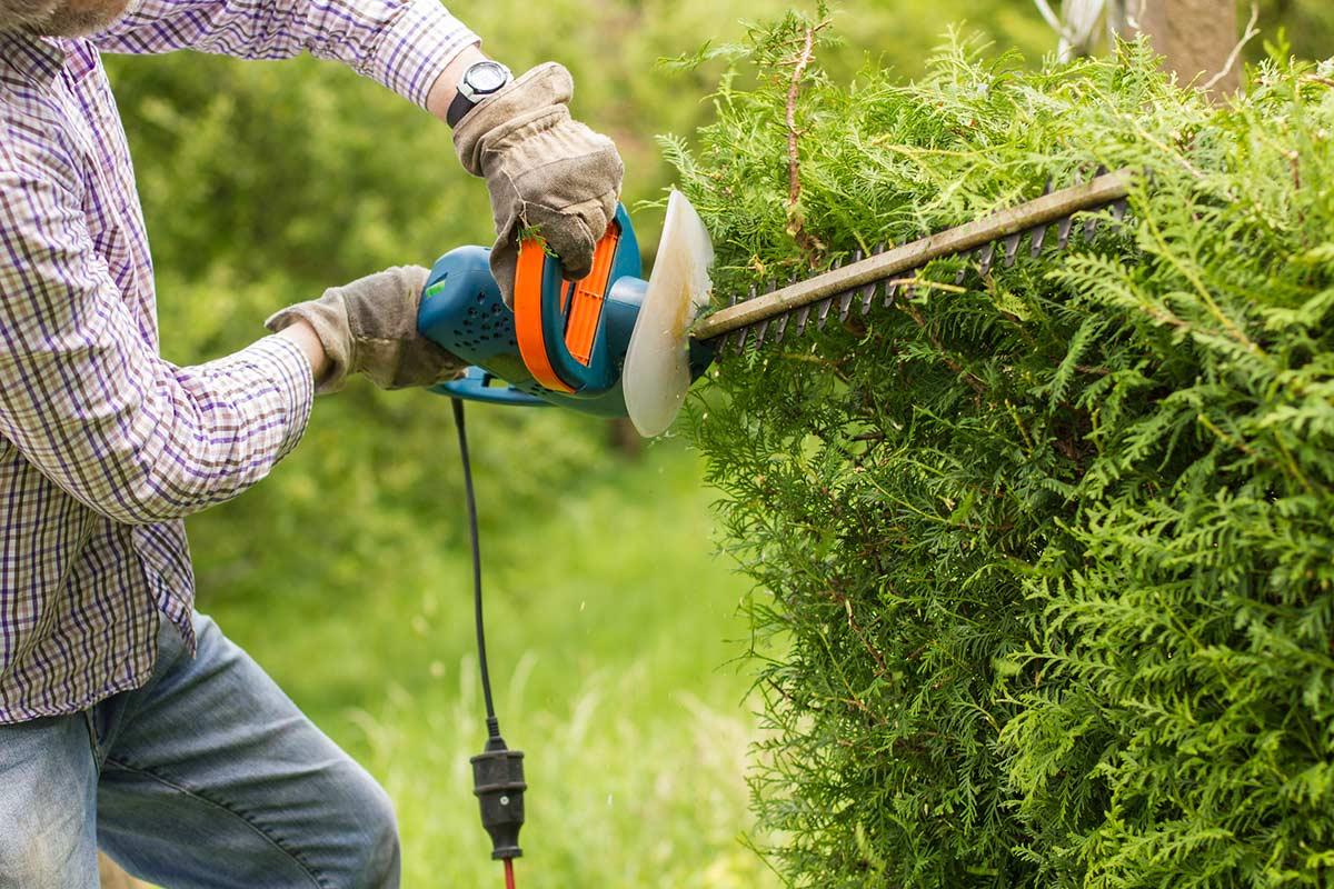 quel prix pour entretien jardin