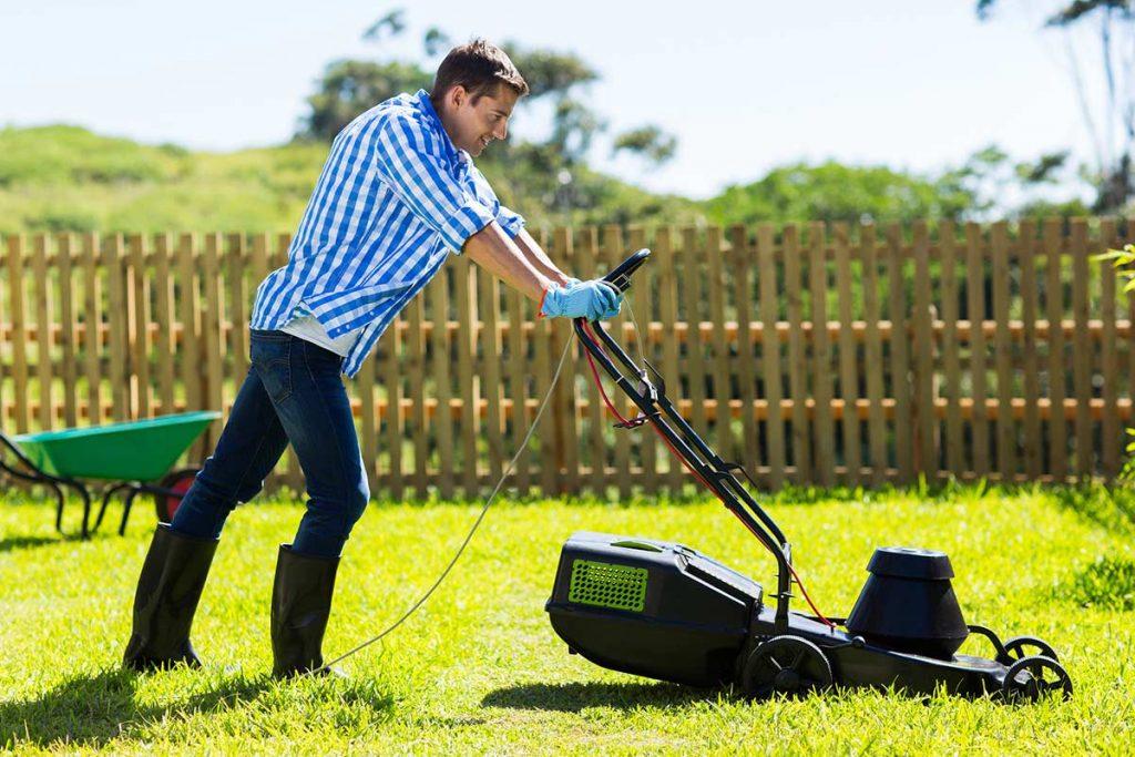 tarif m2 tonte pelouse