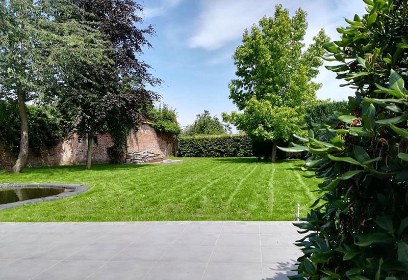 prix m2 création pelouse
